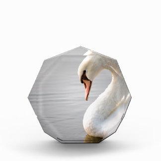 White Swan Acrylic Award