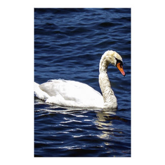 White Swan in Blue Water Stationery
