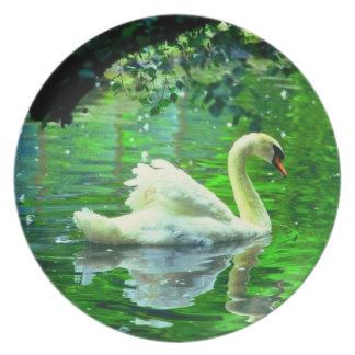 White swan melamine plate