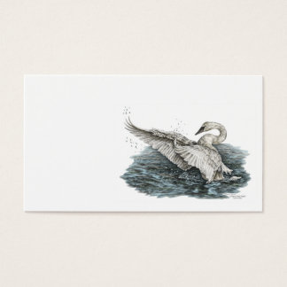 White Swan on Water Business Card