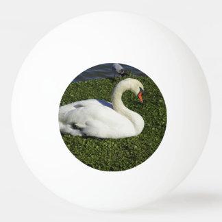 White Swan Ping Pong Ball