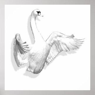 White Swan - poster