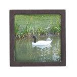 White Swan Premium Trinket Box