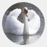 White Swan Stickers