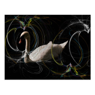 White Swan swimming  in a spiral coloured web. Postcard
