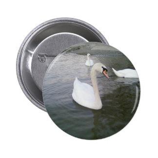 White Swans 2 Inch Round Button