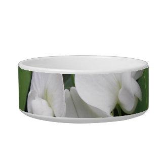 White Sweet Pea Pet Bowl Cat Food Bowls