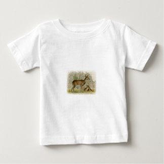White Tail Deer Buck - Doe Baby T-Shirt