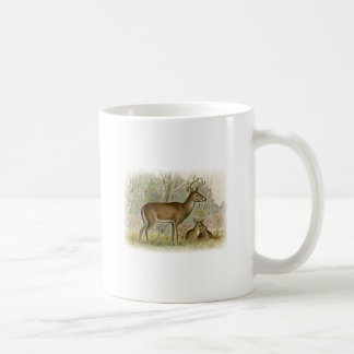 White Tail Deer Buck - Doe Coffee Mug