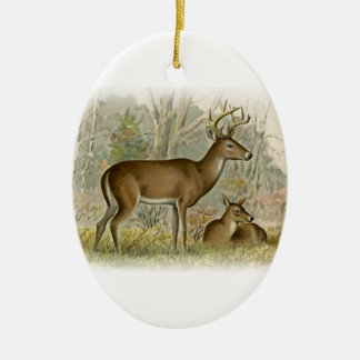 White Tail Deer Buck - Doe Christmas Tree Ornaments