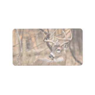 White Tail Deer Buck Label