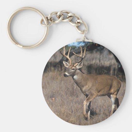 White Tail Deer Keychain