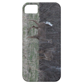 White Tail Deer phone case