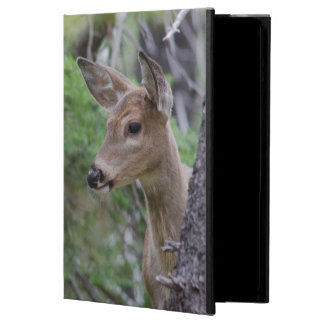 White Tail Deer Portrait Fishercap Lake Cover For iPad Air