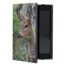 White Tail Deer Portrait Fishercap Lake iPad Mini Cover