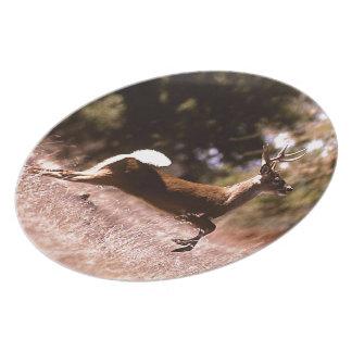 White-Tail Deer Running Plates