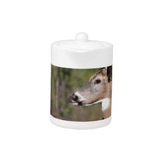 White Tail Ten Point Buck Teapot