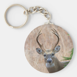 White-tailed Buck Basic Round Button Keychain