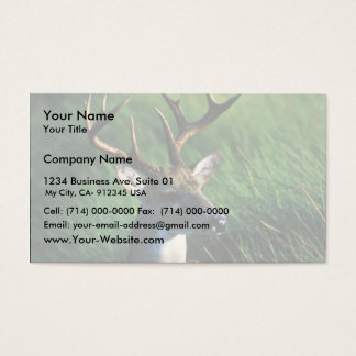 White-tailed Buck Business Card