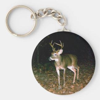 White-tailed Buck Deer Basic Round Button Keychain