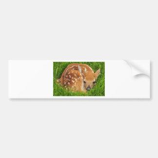 white-tailed-deer-934gahr bumper sticker