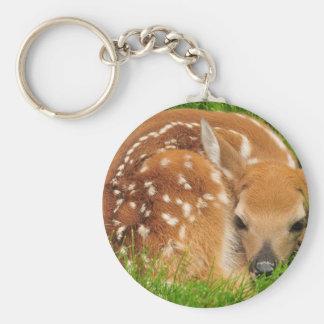 white-tailed-deer-934gahr keychain