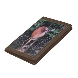 White Tailed Deer at Forest Pond Wallet