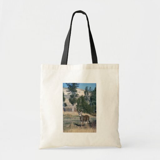 White-tailed deer buck tote bags
