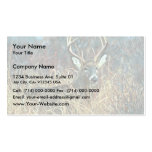 White-tailed Deer Double-Sided Standard Business Cards (Pack Of 100)