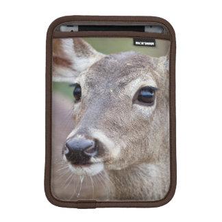 White-tailed Deer doe drinking water iPad Mini Sleeve
