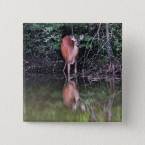 White Tailed Deer Drinking at Forest Pond Button