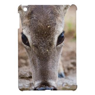 White-tailed Deer drinking water iPad Mini Case