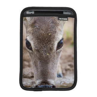 White-tailed Deer drinking water Sleeve For iPad Mini