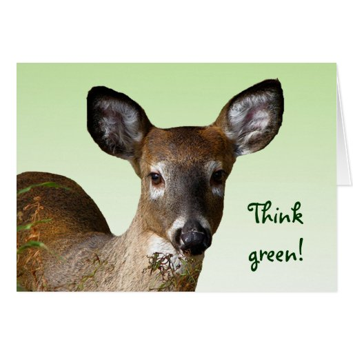 White Tailed Deer Earth Day Card