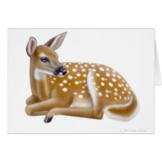 White Tailed Deer Fawn Greeting Card