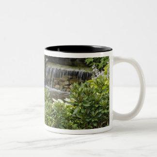 White-tailed deer fawn hiding in backyard Two-Tone coffee mug