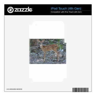 White-Tailed Deer Fawn iPod Touch 4G Skin