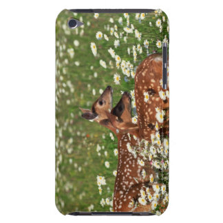 White-tailed deer fawns iPod touch cover