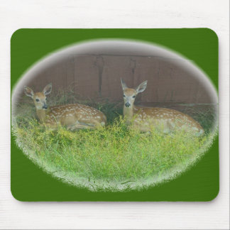 White-Tailed Deer Fawns Mousepad