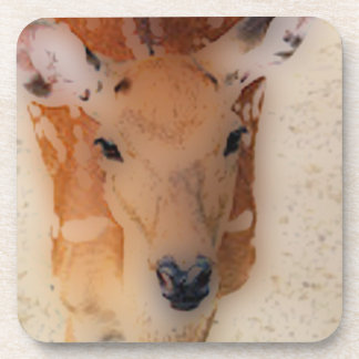 'White-tailed Deer Greeting' Beverage Coaster