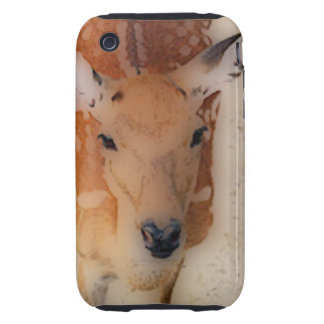 'White-tailed Deer Greeting' Tough iPhone 3 Cover