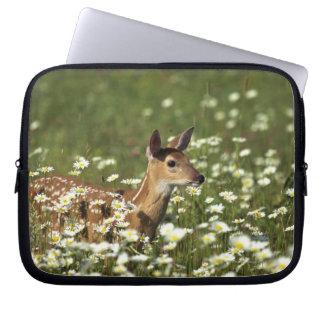 White-tailed deer in field of flowers , computer sleeve