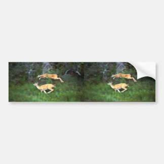 White-tailed Deer in Flight Bumper Stickers