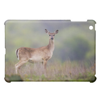 White-Tailed Deer iPad Mini Cases