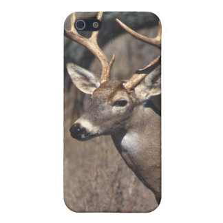 White-Tailed Deer - iPhone 4/4S Cover