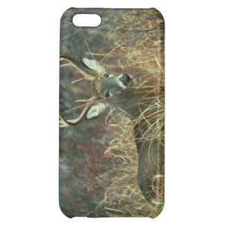 White-Tailed Deer iPhone Cover