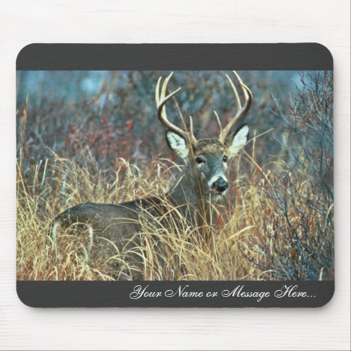 White-tailed Deer Mouse Pad