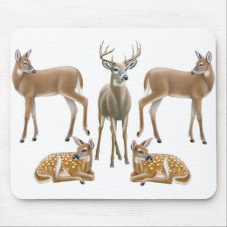 White Tailed Deer Mousepad