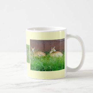 White-Tailed Deer Mug