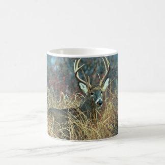 White-tailed Deer Mugs